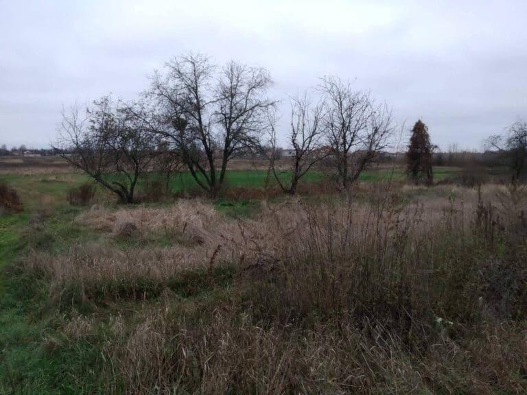 Продаж земельної ділянки Нові Петрівці 10 сот Без комісії