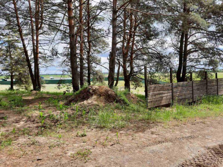 Продаж земельної ділянки Нижча Дубечня 4 га