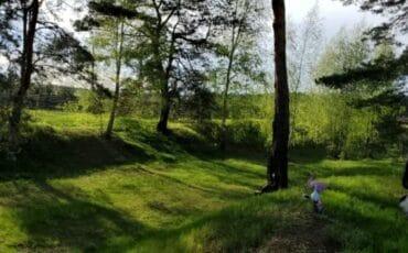 Земельна ділянка в лісовій зоні