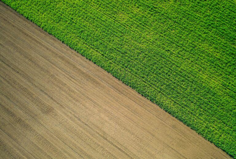 Как поделить землю между собственниками?