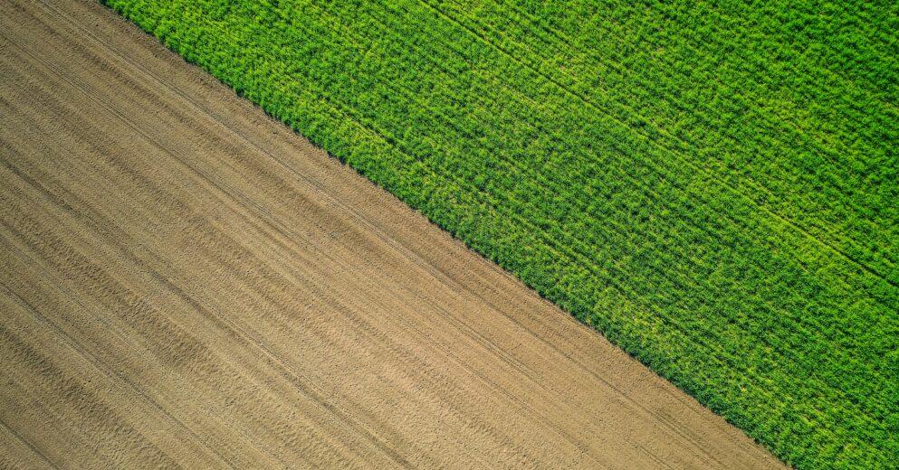 Як поділити землю між власниками?